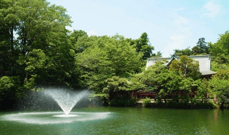 井の頭公園の画像